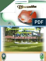 DIAPOSITIVAS. (1).pdf