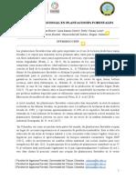 Leon%20Derly%20et%20alCalificado.pdf