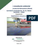PLAN DE REMEDIACION MCATALAN.pdf