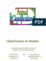 animalclassificationpowerpoint-170220081142