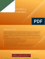 SANEAMIENTO DE LA PROPIEDAD AGRARIA