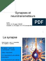 dia-sn6-synapses