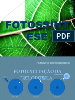 fotossintese.pptx