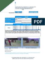 FORMATO DE ACTIVIDAD DIARIA 2018.(1).docx