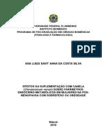 Disseretação de Mestrado - Ana Luiza Sant Anna da Costa Silva.