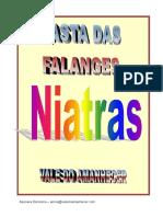 Manual da Falange Niatra.pdf