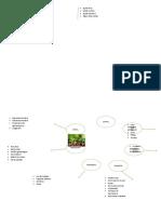 mapa conceptual agronegocio