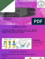 atresia del esofago