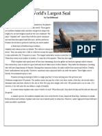 6th-elephant-seals_ pdf.docx