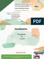 DIAPOSITIVAS PRAZIQUANTEL - GRUPO 02.pptx