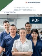 08_participacion_consulta
