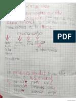 Español(13)