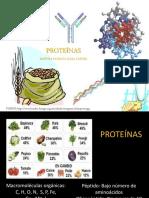Proteinas.