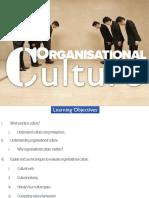organisational culture 4