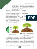 ARTICULO  Dialnet-ComoAplicarElArbolDeCausaYEfectoALasPYMESEnColombi-6154117 (2) (1)-3-4.pdf