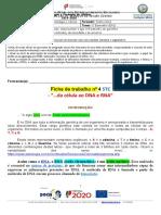 Ficha 4 STC_NG7_DR1 (19_20 ) Turma D