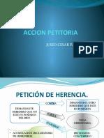 ACCION PETITORIA