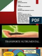 TRANPORTACION NUTRIMENTAL.pptx