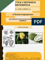 practica 5 botanica sistematica-Alessanda Blas.pptx