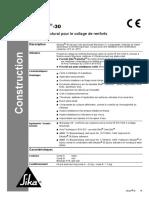 dz-np-sikadur-30.pdf