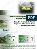 MicronutrienteparaoCafeeiroJLFavarin.pdf