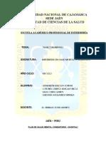 PLAN DE SALUD MENTAL COMUNITARIO CHONTALI 01