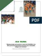 Informe BIA BUMA 20-12-2010