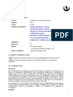 IS222_Seminario_de_Investigacion_Aplicada_202002 (1)