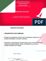 MEMBRANA CELULAR II.ppt