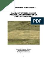 230731573-Manual-de-Pastizales-MINAG.pdf