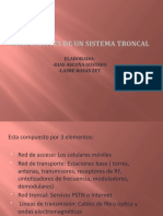 SISTEMAS TRONCALES -Dias ascuña -Laime Rosas