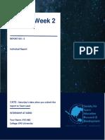 Individual Report Sample