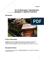 Capitulo 01 Introdução pdf