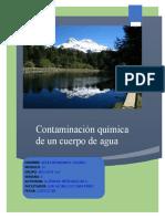 HernandezGalindo_Adela_M20S1_Contaminacionquimicadelagua
