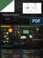 PIZARRA BIOLOGÍA 4TO Fotosíntesis
