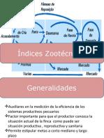 Indices Zootecnicos