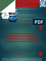 TRABAJO DE BIOTECNOLOGIA AMBIENTAL 2