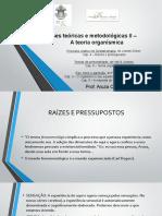 bases teoricas e metod II - a teoria organismica 2018.pptx