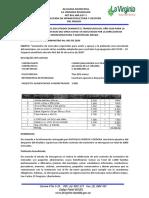 INFORME VIRGINIA.pdf