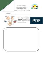 Guia evaluada  Ciencias ( evaluaciones pendientes)