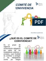 COMITE DE CONVIVENCIA LABORAL.pdf