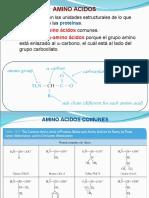 bioquimica-introduccion-ii-proteinas-enzimas.ppt