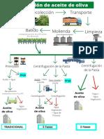 Extraccion de aceite de oliva (4)