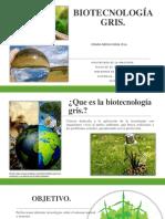 BIOTECNOLOGÍA GRIS