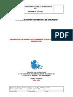FORMATO DE INFORME DE INSPECCION TECNICA DE SEGURIDAD 2019 (1)