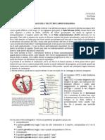 File Unico ECG