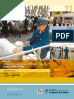 INTA IPAF Atlas Patagonia
