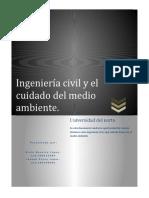ENSAYO INGENIERIA CIVIL Y CUIDADO DEL MEDIO AMBIENTE.
