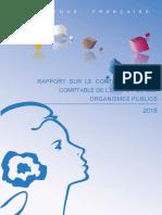 RapportCIC2018.pdf