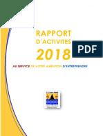 Rapport-activité CGA PN-2018-bon-12-04-19.pdf
